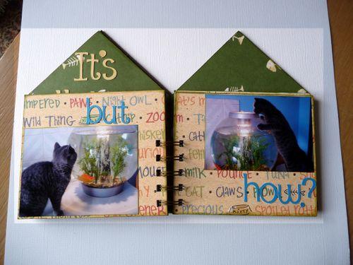 Cat House 5