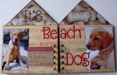 Dog House 5