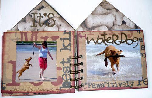 Dog House 7